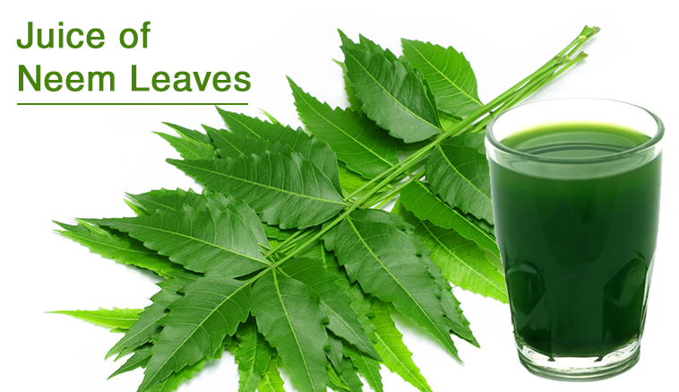 Juice of Neem Leaves