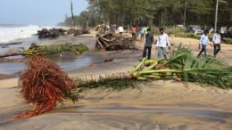 Torrential rains and wind slashes Kanyakumari district