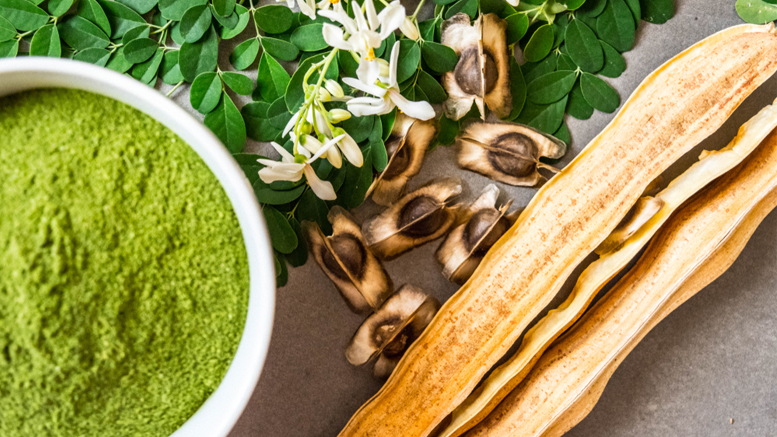 Moringa – Amazing Health Benefits You Must Know About!